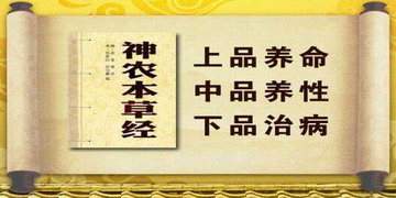 <FONT color=#00b050><STRONG>本草汇解</STRONG></FONT>